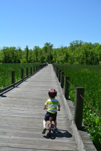 Riding the Mount Vernon Trail.
