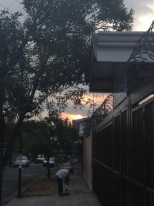 A walk at dusk